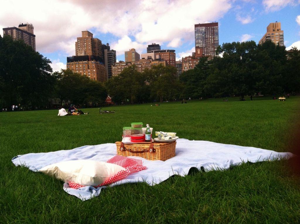 Arrange Romantic Lunch In A Park