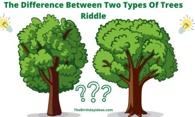 How Can You Tell the Difference Between Two Types of Trees