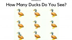 How Many Ducks Do You See